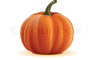 Pumpkin Isolated on White Background. Vector.