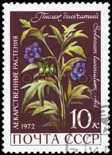 USSR - CIRCA 1972: A Stamp printed in USSR shows the Nightshade, with the description