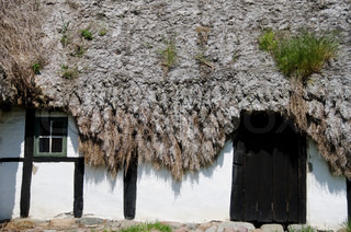 Detail of a medieval farm house with sea grass thatched roof