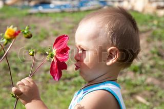 lille dreng lugter blomst af en dahlia i eftermiddag