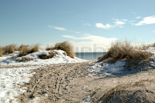 Winter picture from the beach