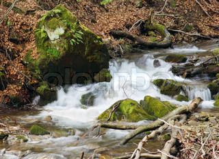 Clear Pure Water Stream Flowing over Rocks