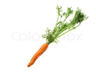 Carrot with leafy top