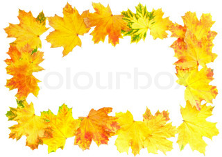 Frame of Autumn Leaf over white. Isolated