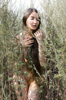 Portrait of the beautiful naked woman among the grass