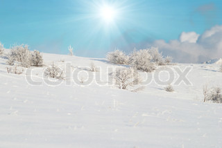 Winter icy landscape with bright shining sun