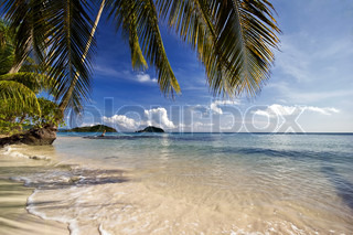 Exotic tropical beach under blue sky