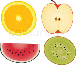 An orange, an apple, a water-melon and kiwi in a vector