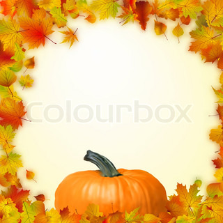 Colorful autumn card template leaves with Pumpkin and copy space