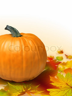 Fall vegetables as a background including pumpkins