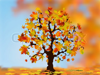 Beautiful autumn tree for your design. EPS 8 vector file included