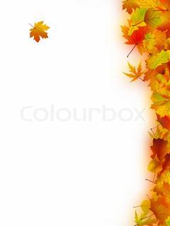Dekorative ramme fra lyse efterårsblade