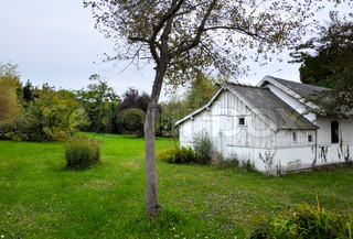 nice green garden, white wooden cottage - beautiful place