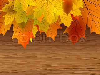 Fall coloured leaves making a border on a wooden background, Fall Leaves