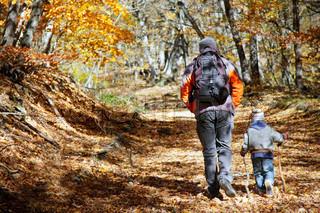 far og søn tur i efteråret skov