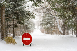 Stop Sign on winter forest Road under snowfall