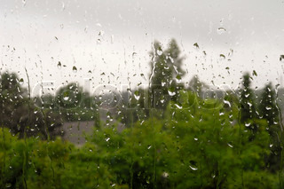 Raindrops on window with trees in the background
