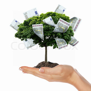 Money Tree with cuts on his hand of man