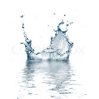 water splash freezed in motion against white background