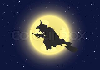 Eine Hexe fliegt auf ihren Besen Vector illustration