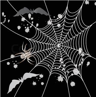 Spider, bat and a web on a black background