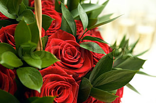 Fine wedding bouquet from set of red roses and green leaves close up