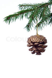 christmas tree decoration cone and fir branch over white background