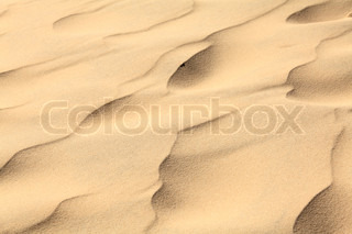 Sand waves on the highest dune in Europe - Dune of Pyla (Pilat), Arcachon Bay, Aquitaine, France