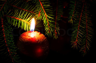 christmas card with candle and fir branches