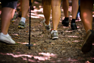 Closeup view of legs of people walking in the woods