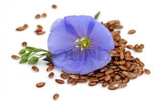 Flax seeds with flower