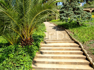 A beautiful path in a garden with rising steps.
