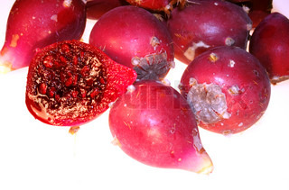 Prickly pear cactus red fruits