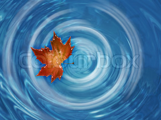 red maple leaf floating in whirlpool river