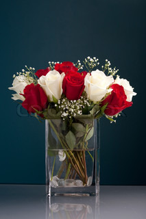 An arrangement of beautiful red and white roses with babys breath in a clear glass vase