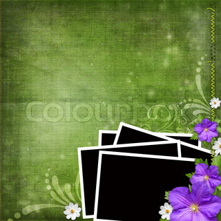 photos over green shabby background with violet and white flowers