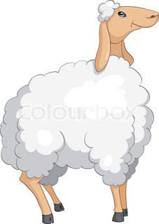 Cartoon Character Sheep Isolated on White Background