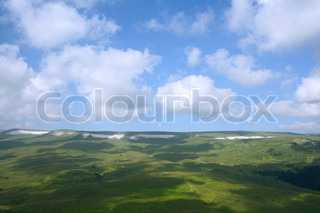 beauty landscape with green grass