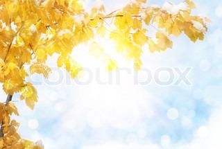 efteråret abstrakt baggrund med sol stråle