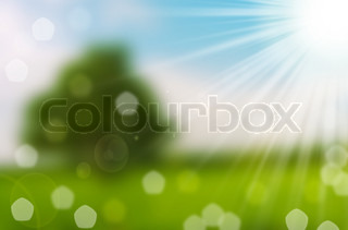 nature spring bokeh background with sun beam