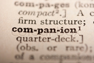 Word companion from the old dictionary, a close up