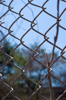 Closeup of a chain link fence near the woods, over a blue sky