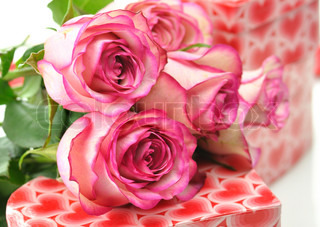 pink roses and gift boxes