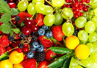 mix of fresh fruits and berries