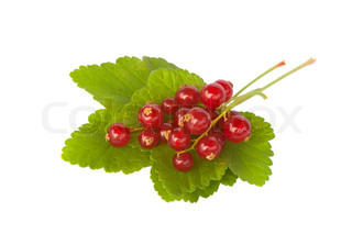 Close-up of fresh redcurrant berries, isolated on a white background