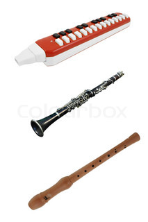 different kind of wind instruments under the white background