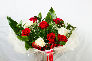 White rose with blue fringes and red rose in