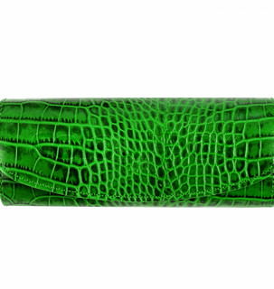 Snake leather wallet isolated on white background