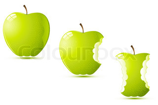 illustration of raw apples on white background