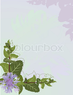 Mint and cornflower background